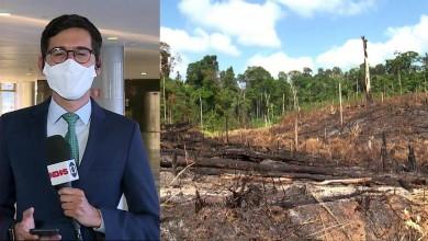 Photo of 'Convite ao crime' e 'desrespeito à constituição': veja repercussão da suspensão da fiscalização na Amazônia e no Pantanal