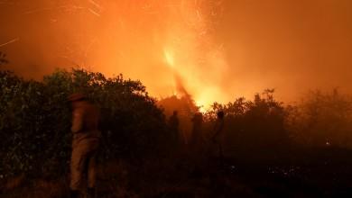 Photo of Pantanal tem segundo maior número de queimadas para agosto desde início das medições; focos detectados na Amazônia superam média histórica