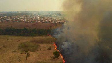 Photo of Parlamentares visitam áreas queimadas no Pantanal