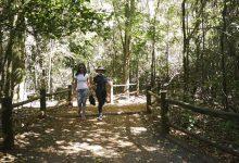 Photo of Governo federal regulamenta turismo de trilhas no Brasil
