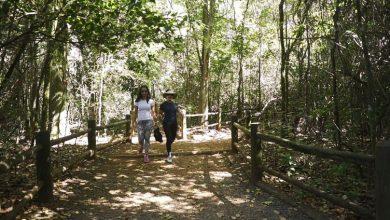 Foto de Governo federal regulamenta turismo de trilhas no Brasil