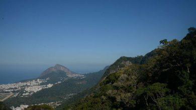 Foto de Parque da Tijuca limita visitas na trilha do Parque Lage-Corcovado